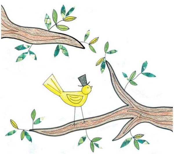 bird-page